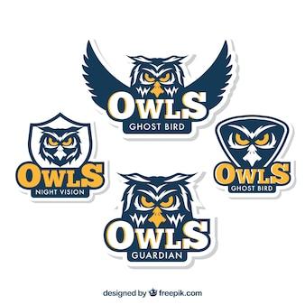 Kolekcja logo niebieskiej sowy