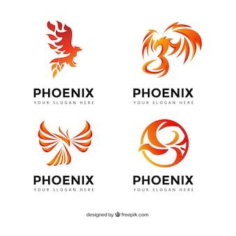 Kolekcja logo phoenix