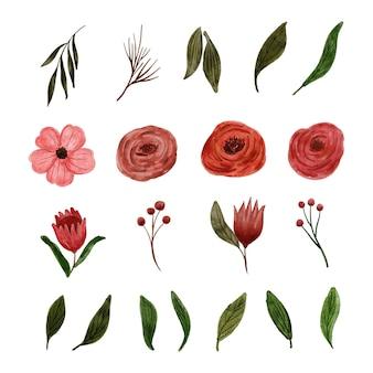 Kolekcja malarstwa akwarelowego z czerwonymi kwiatami i zielonymi liśćmi