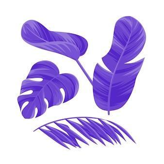 Kolekcja monochromatycznych liści tropikalnych