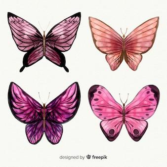 Kolekcja motyli akwarela