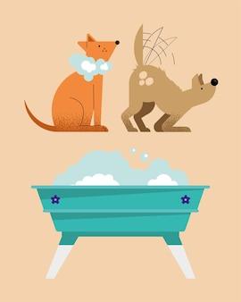 Kolekcja myjących zwierząt domowych zestaw ikon