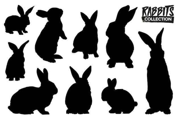 Kolekcja na białym tle sylwetki królików. zasoby graficzne.