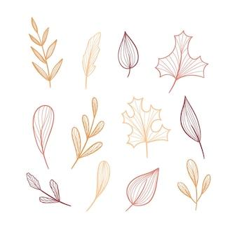 Kolekcja narysowanych liści lasu
