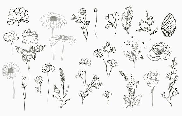 Kolekcja obiektów linii z dłonią, magnolią, różą, lawendą, jaśminem, liściem, kwiatem, słonecznikiem