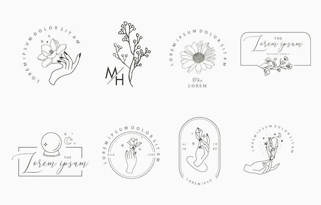 Kolekcja obiektów liniowych z ręką, magnolią, lawendą, kryształem