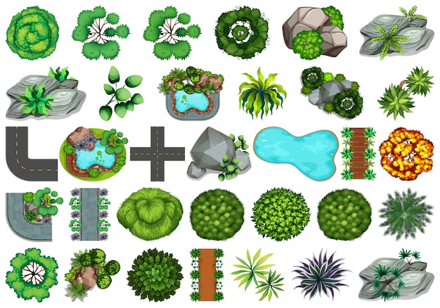 Kolekcja obiektów o tematyce przyrodniczej i elementów roślinnych