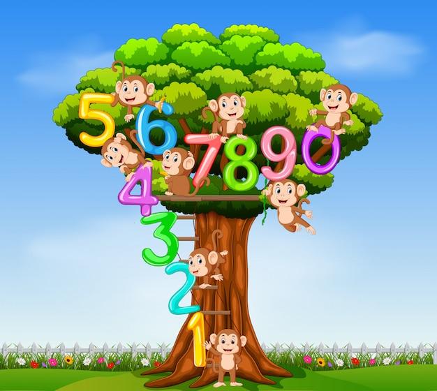 Kolekcja od 0 do 9 z małpą na drzewie