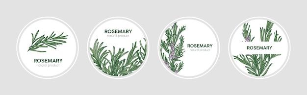 Kolekcja okrągłych etykiet ozdobionych gałązkami rozmarynu