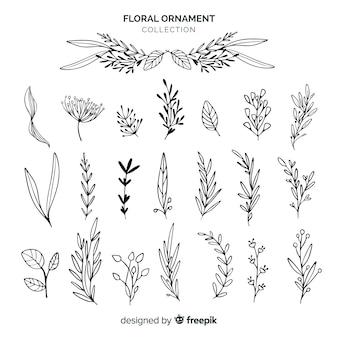 Kolekcja ornamentów kwiatowych