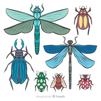 Kolekcja owadów kolorowy wyciągnąć rękę