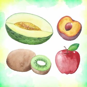 Kolekcja owoców akwarela