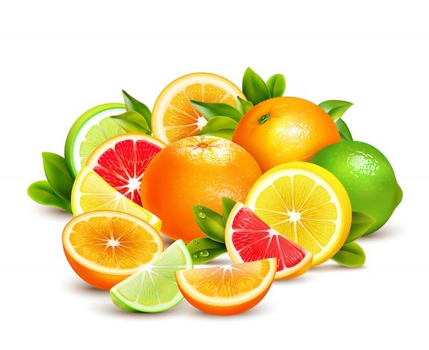 Kolekcja owoców cytrusowych realistyczna kompozycja