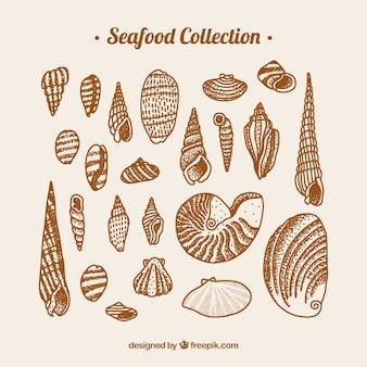 Kolekcja owoców morza