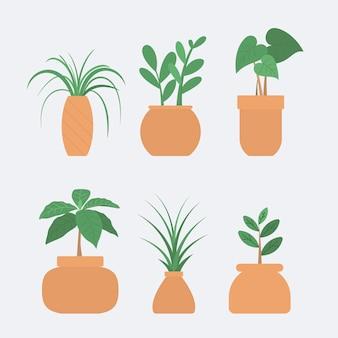 Kolekcja pięknych roślin doniczkowych w doniczkach