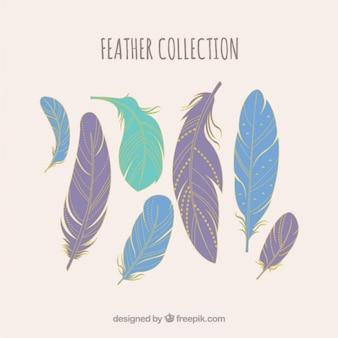 Kolekcja pióra w pastelowych kolorach