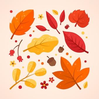 Kolekcja płaskich jesiennych liści