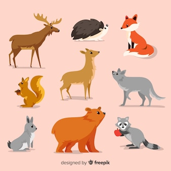 Kolekcja płaskich jesiennych zwierząt leśnych