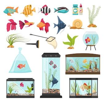 Kolekcja podstawowych elementów akwarium