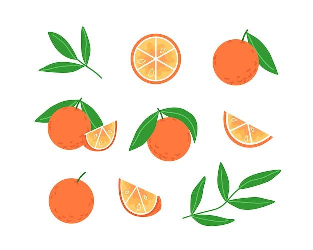 Kolekcja pomarańczy i liści w płaskim stylu