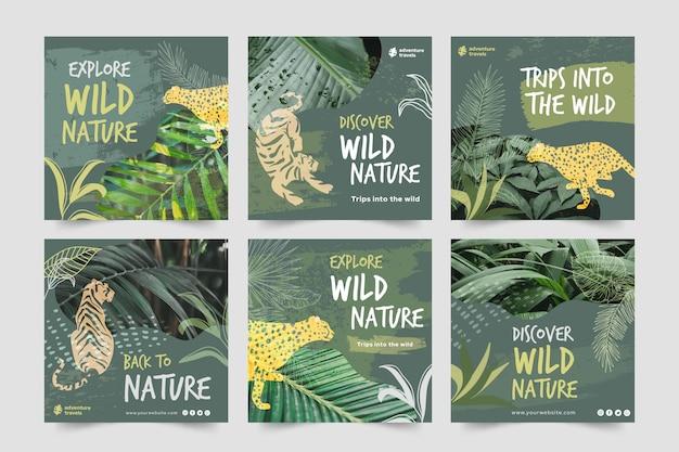 Kolekcja postów na instagramie dla dzikiej przyrody z roślinnością i zwierzętami