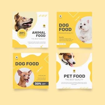 Kolekcja postów na instagramie na karmę dla zwierząt z psem