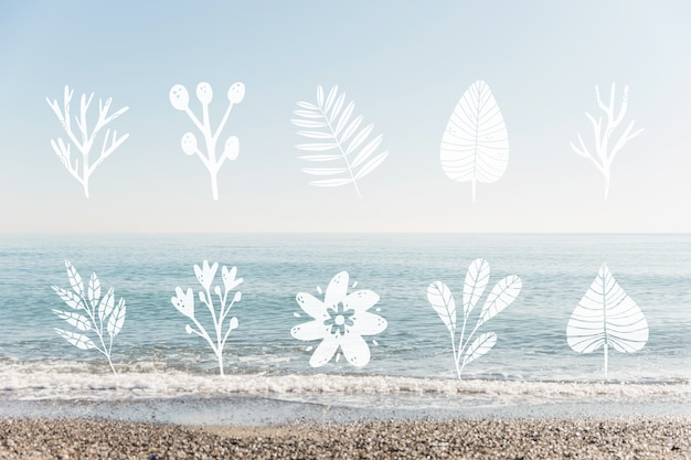 Kolekcja projektowania liści i nadmorskiego krajobrazu