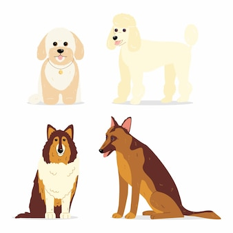 Kolekcja psów różnych ras psów, takich jak mini pudel collie owczarek niemiecki i maltipoo