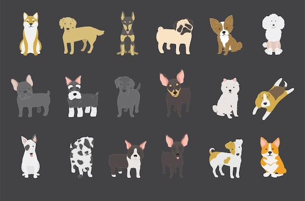 Kolekcja psów