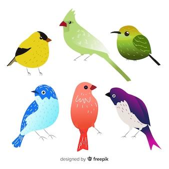 Kolekcja ptaków w stylu wyciągnąć rękę
