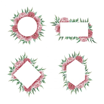 Kolekcja Ramek Kwiatowych Akwarela Piwonii Premium Wektorów