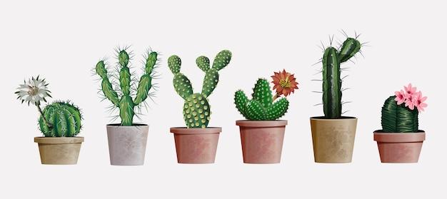 Kolekcja realistycznych szczegółowych kaktusów domowych lub biurowych do projektowania i dekoracji wnętrz. egzotyczne i popularne kaktusy do wnętrz z kwiatami do wystroju wnętrz domu lub biura.