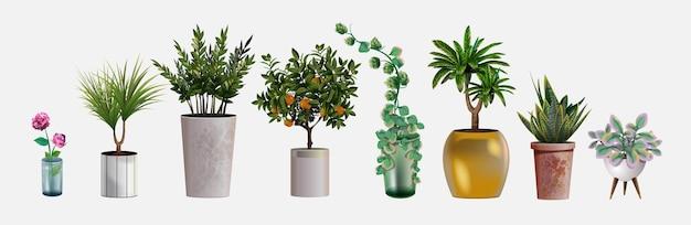 Kolekcja realistycznych szczegółowych roślin domowych lub biurowych do projektowania i dekoracji wnętrz. tropikalna i śródziemnomorska roślina i kwiaty do dekoracji wnętrz domu lub biura