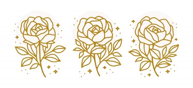 Kolekcja ręcznie rysowane botaniczny złoty kwiat róży dla piękna kobiecego logo