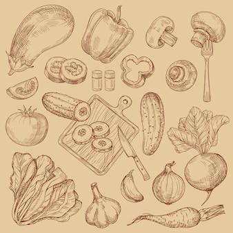 Kolekcja ręcznie rysowane ekologiczne świeże warzywa szkicu
