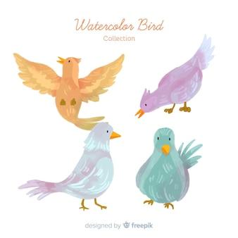 Kolekcja ręcznie rysowane jesienne ptaki