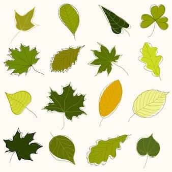 Kolekcja ręcznie rysowane zielonych liści różnych drzew