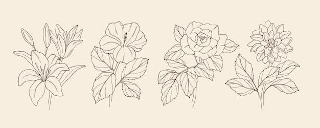 Kolekcja ręcznie rysowanych kwiatów