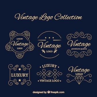 Kolekcja rocznika logotypu