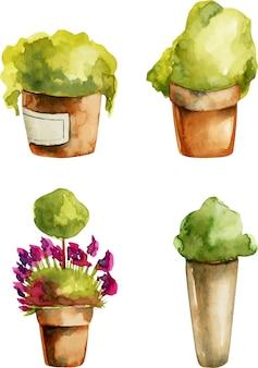 Kolekcja roślin akwarela w glinianych doniczkach