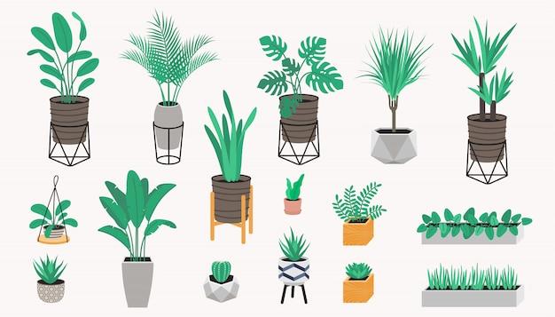 Kolekcja roślin doniczkowych w stylu loftu. sukulenty, kaktus i rośliny domowe. zestaw roślin domowych