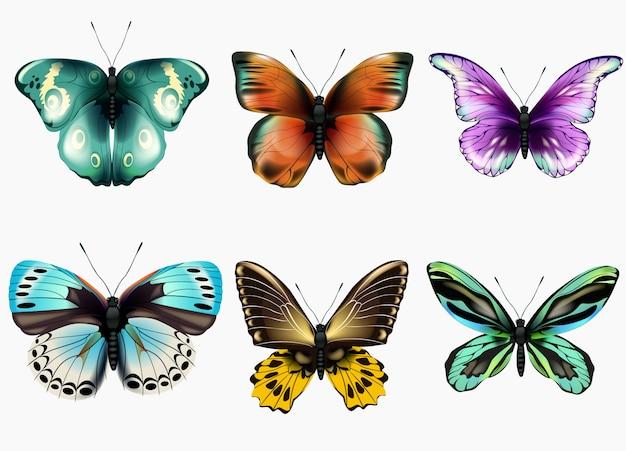 Kolekcja różnokolorowych motyli. ilustracja