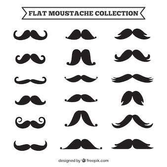 Kolekcja różnych wzorów wąsami