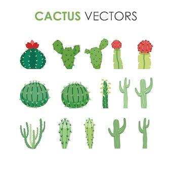 Kolekcja różnych zielonych egzotycznych pustynnych kaktusów w płaskiej ilustracji