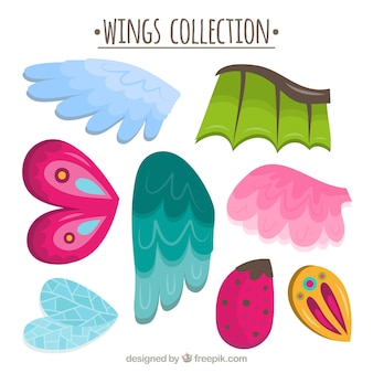 Kolekcja skrzydeł o różnych wzorach