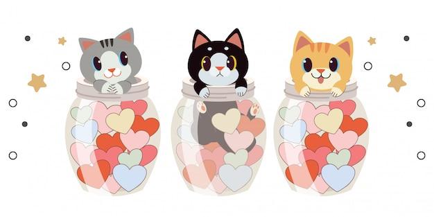 Kolekcja ślicznego kota w przezroczystym słoju i sercu na białym