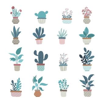 Kolekcja ślicznych roślin doniczkowych hygge