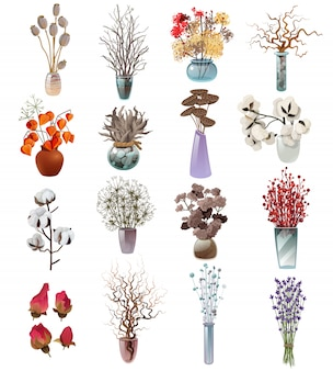 Kolekcja suchych kwiatów bukiety w wazach