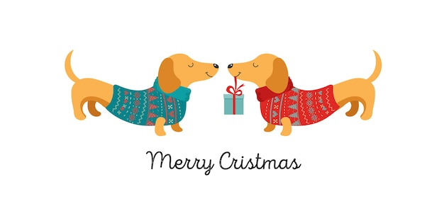Kolekcja świątecznych psów