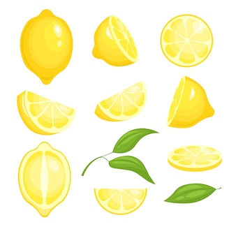 Kolekcja świeżych cytryn. żółte plastry owoców cytrusowych z zielonym liściem do lemoniady. pojedyncze zdjęcia kreskówek cytryn